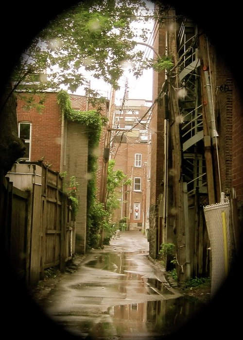 Le Plateau Greeting Card featuring the photograph Back Lanes by Michael Litvack