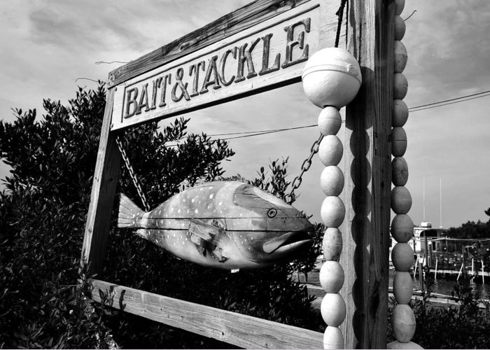 Bait And Tackle Shop Greeting Card featuring the photograph Bait And Tackle by David Lee Thompson