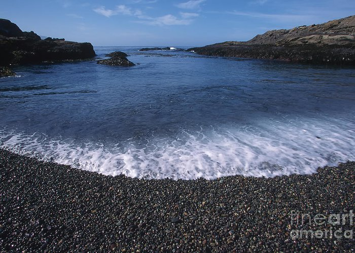 California Greeting Card featuring the photograph Beach At Point Lobos by Stan and Anne Foster