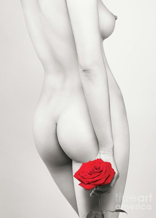 Nude Greeting Card featuring the photograph Beautiful Naked Woman With A Rose by Oleksiy Maksymenko