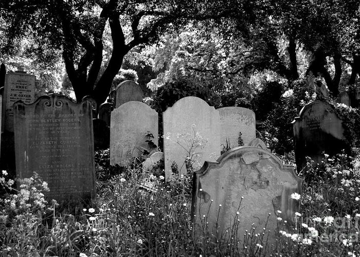 Cemetery Greeting Card featuring the photograph Brompton Cemetery London England 2009 by Wayne Higgs