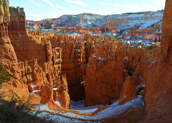 Bryce Canyon Greeting Card featuring the photograph Bryce Canyon by Surjanto Suradji