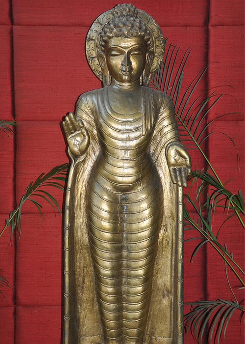 Buddha Greeting Card featuring the photograph Buddha 1 by Vijay Sharon Govender