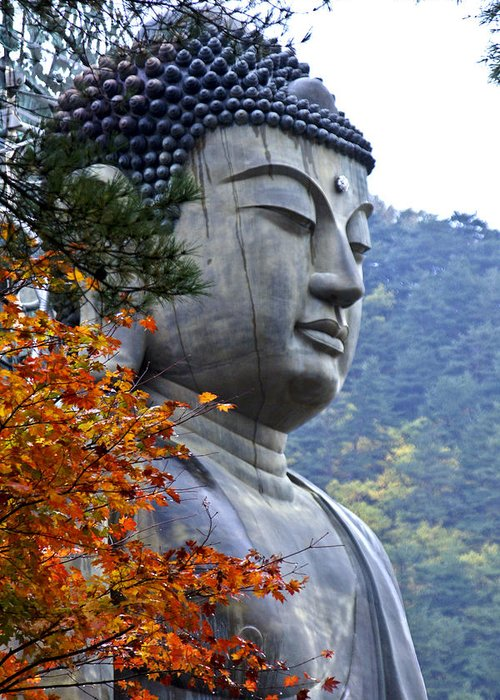 Buddha Greeting Card featuring the photograph Buddha In Autumn by Michele Burgess