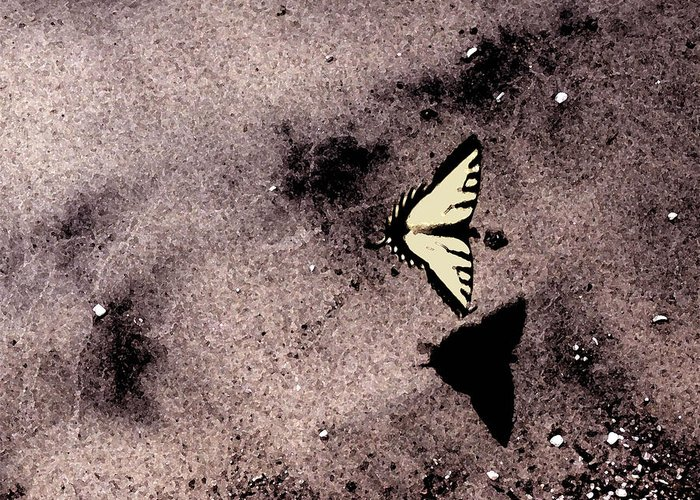 Landscape Greeting Card featuring the photograph Butterfly And Sand Wc by Lyle Crump