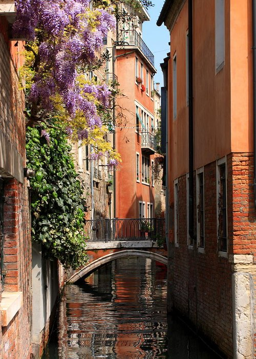 Venice Greeting Card featuring the photograph Canal In Venice With Flowers by Michael Henderson