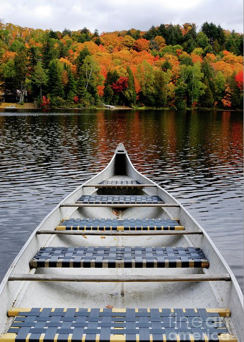 Canoe Greeting Card featuring the photograph Canoe On A Lake by Oleksiy Maksymenko