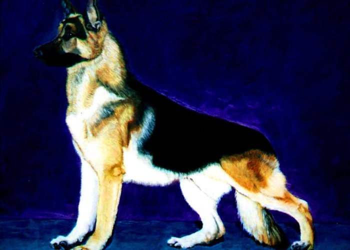 Dog Portrait Greeting Card featuring the painting Champion by Stan Hamilton