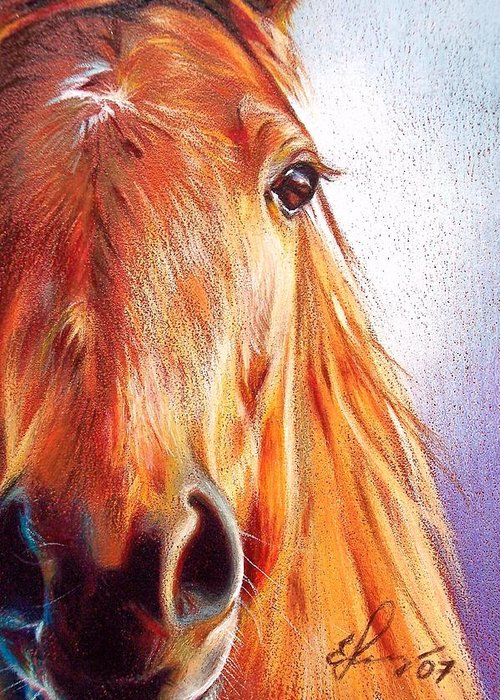 Horse Animal Art Equine Drawing Portrait Greeting Card featuring the drawing Chestnut by Elena Kolotusha