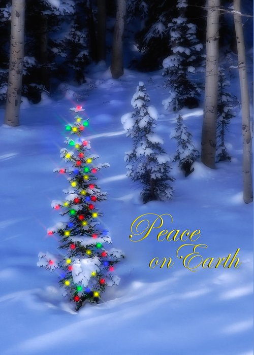 Christmas Tree Greeting Card featuring the photograph Christmas Tree On A Snowy Hillside by Utah Images
