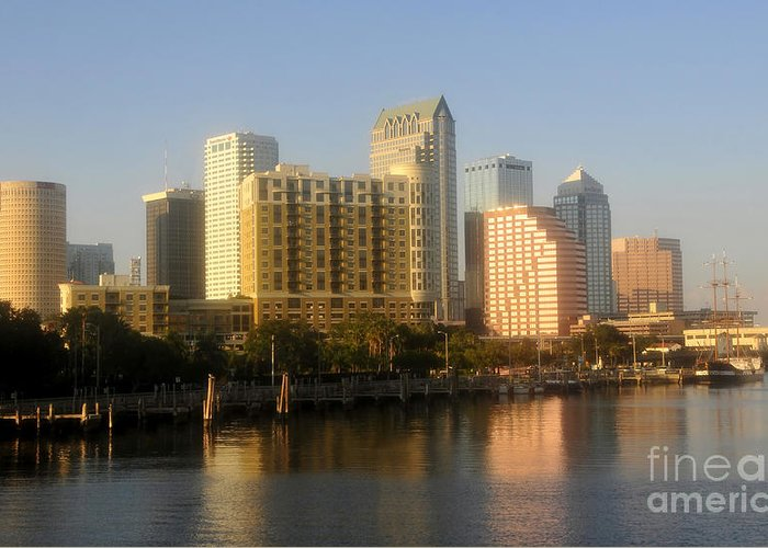 Tampa Florida Greeting Card featuring the photograph City By The Bay by David Lee Thompson