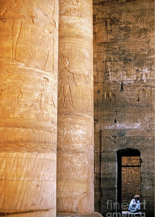Adult Greeting Card featuring the photograph Columns With Hieroglyphs Depicted Horus At The Temple Of Edfu by Sami Sarkis
