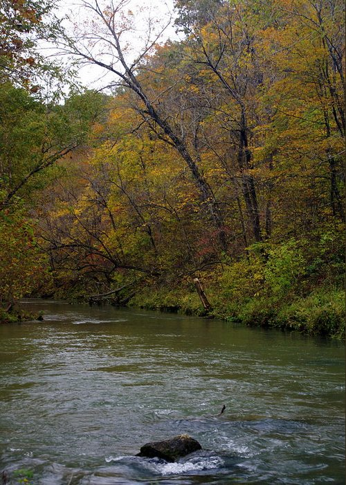 Current River Greeting Card featuring the photograph Current River 8 by Marty Koch