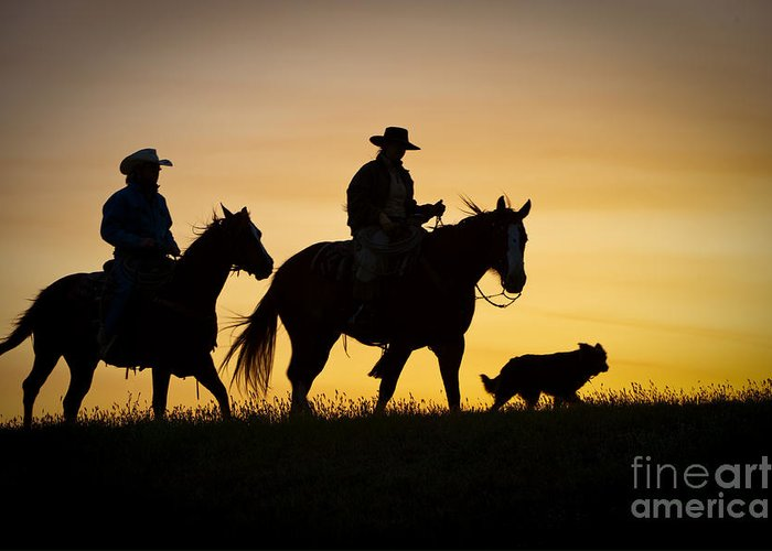 Cowboys And Horses Greeting Card featuring the photograph Day Is Done by Sandra Bronstein