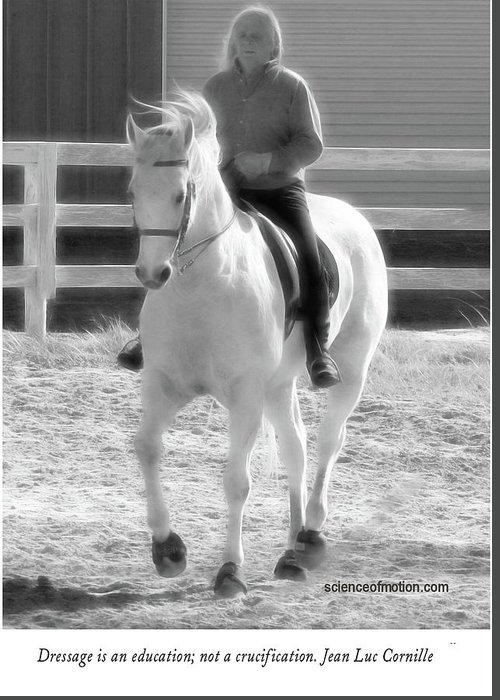 Dressage Greeting Card featuring the photograph Dressage by Helyn Broadhurst Cornille