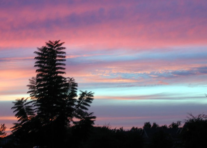 Sunrise-sunset Photography Greeting Card featuring the photograph Early Evening Sky by Frederic Kohli
