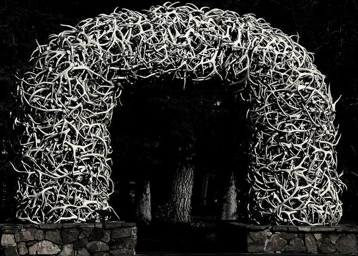 Jackson Hole Wyoming Greeting Card featuring the photograph Elk Antlers Gate Jackson Hole Wy by Christine Till