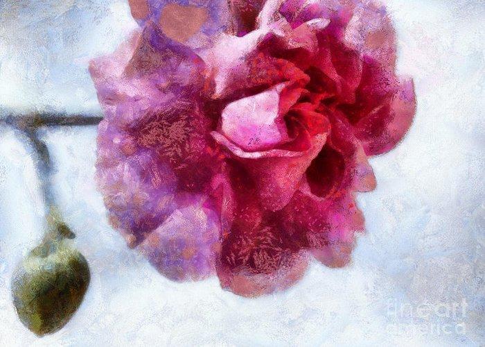 Pink Carnation Greeting Cards