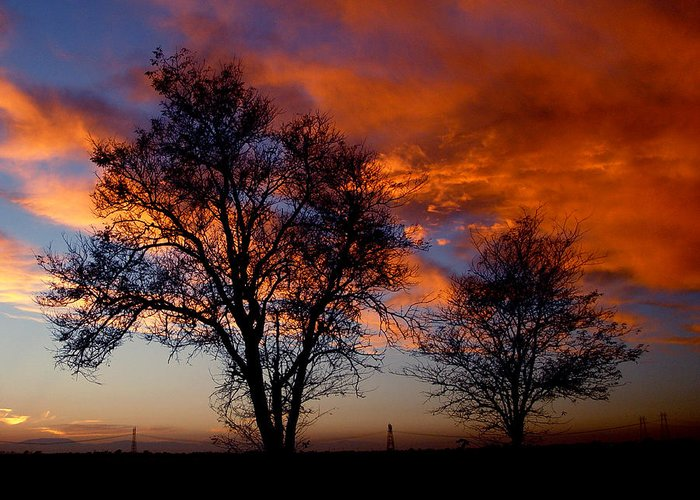 Sunset Greeting Card featuring the photograph Fire In The Sky by Peter Piatt