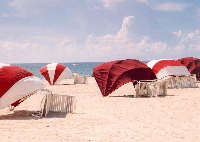 Florida Greeting Card featuring the photograph Florida Umbrellas by Andrea Simon