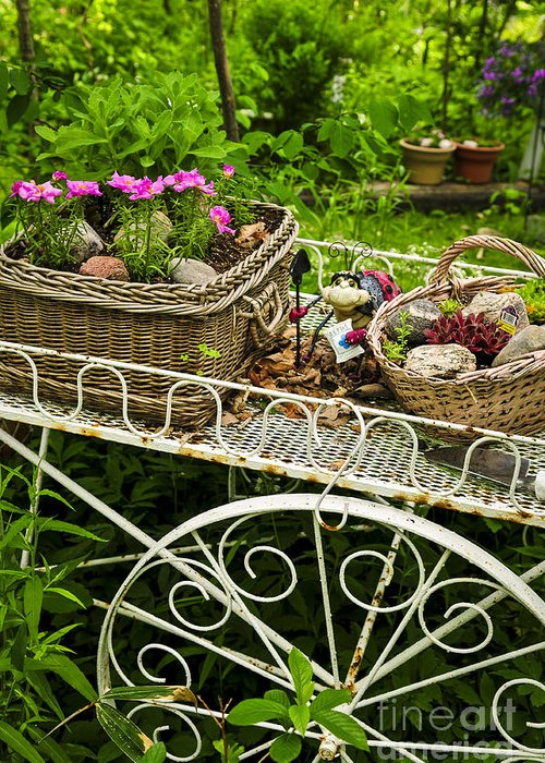 Garden Greeting Card featuring the photograph Flower Cart In Garden by Elena Elisseeva