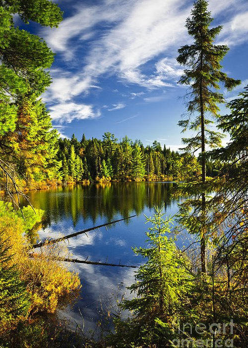 Lake Greeting Card featuring the photograph Forest And Sky Reflecting In Lake by Elena Elisseeva