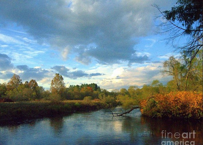 Water Greeting Card featuring the photograph Forest Park by Rennae Christman