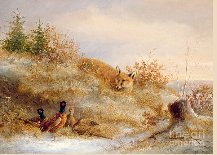 Fox And Pheasants In Winter (oil) Landscape; Snow; Pheasant; Male; Female; Cock; Hen; Prey; Stalking Greeting Card featuring the painting Fox And Pheasants In Winter by Anonymous