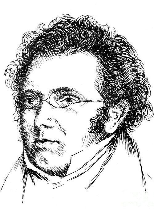 18th Century Greeting Card featuring the photograph Franz Schubert (1797-1828) by Granger