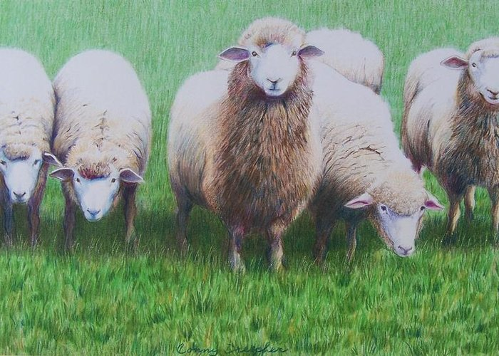 Sheep Greeting Card featuring the mixed media Friends by Constance Drescher