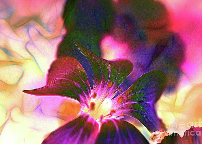 Flowers Greeting Card featuring the photograph Garden Glow by Francine Collier