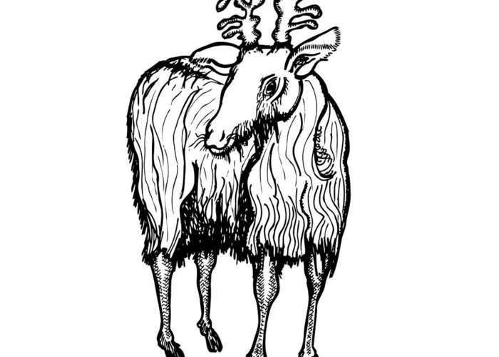 Drawing Greeting Card featuring the drawing Goat by Karl Addison