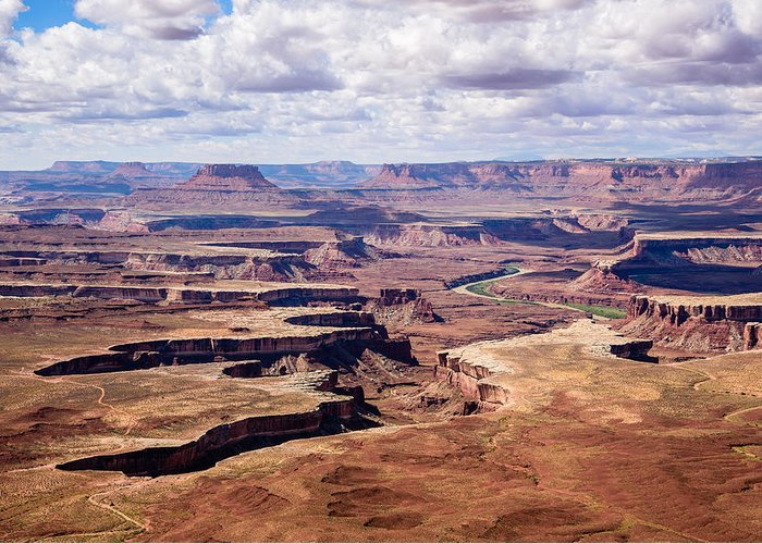 Canyonlands National Park Greeting Card featuring the photograph Green River View by Paul Moore