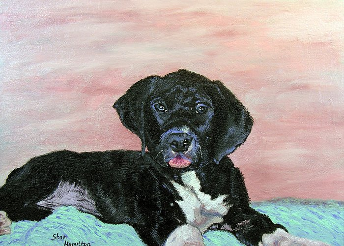 Pet Portrait Greeting Card featuring the painting Gypsy by Stan Hamilton