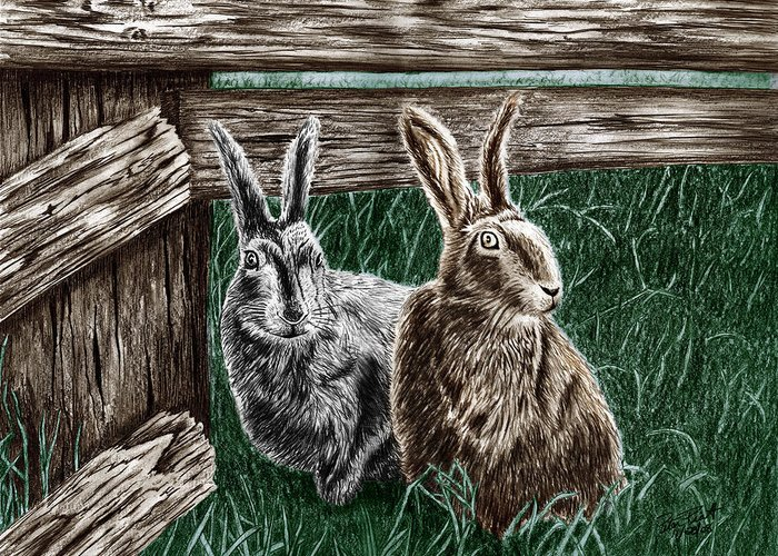 Hare Line Greeting Card featuring the drawing Hare Line by Peter Piatt
