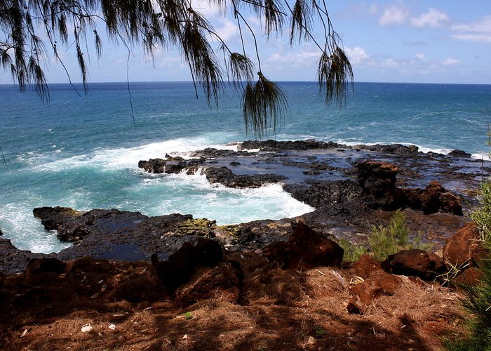 Spouting Greeting Card featuring the photograph Hawaiian Snapshot by Annie Babineau