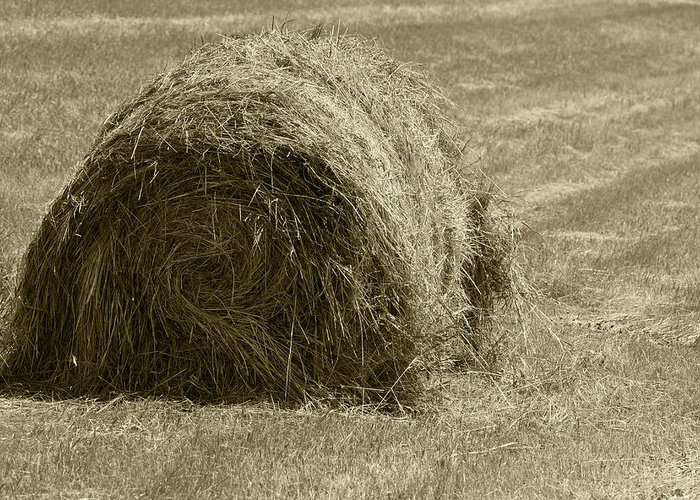 Bale Greeting Card featuring the photograph Hay Bale In A Field by Robert Hamm