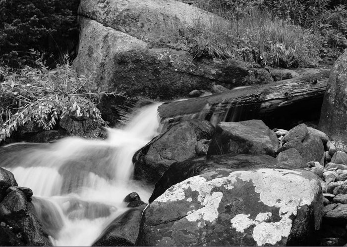 Waterfall Greeting Card featuring the photograph Hidden Falls by Brian Anderson