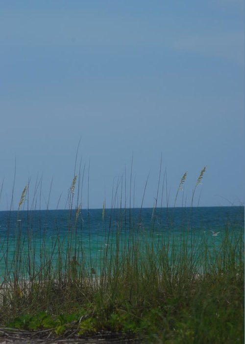 Landscape Greeting Card featuring the photograph Holmes Beach Florida 2 by Lisa Gabrius