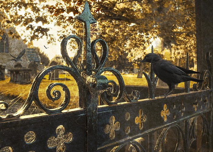 Cemetery Greeting Card featuring the photograph Jackdaw On Church Gates by Amanda Elwell