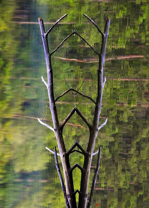 Photography Greeting Card featuring the photograph Jacob's Ladder by Skip Hunt