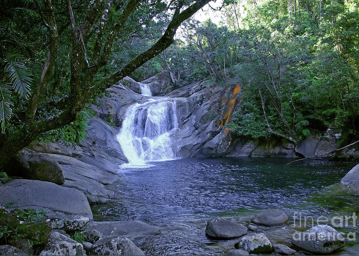 Tropical Greeting Card featuring the photograph Josephine Falls And Tropical Pool by Kerryn Madsen- Pietsch