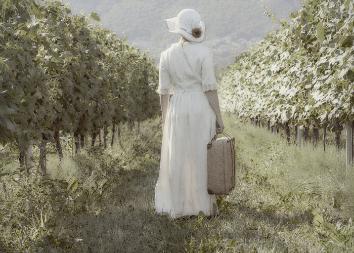 Female Greeting Card featuring the photograph Lady In Vineyard by Joana Kruse