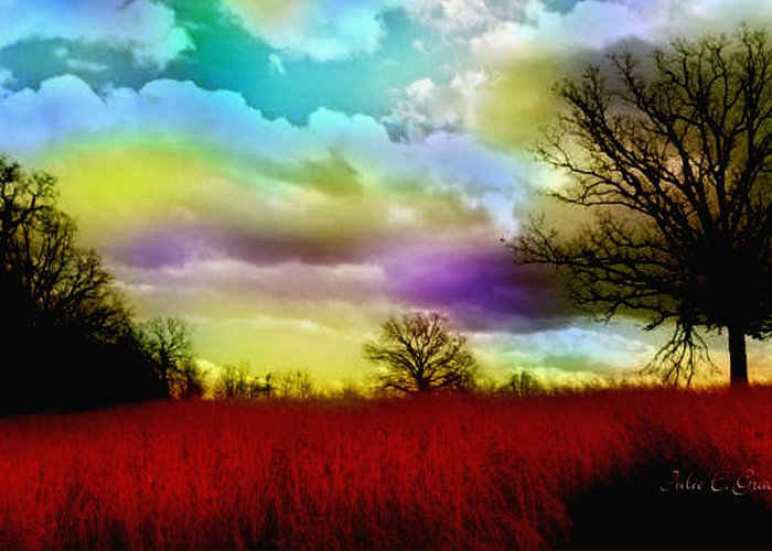 Red Greeting Card featuring the photograph Landscape In Red by Julie Grace