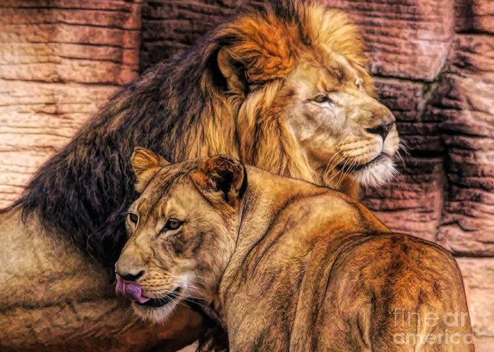 Lion Greeting Card featuring the photograph Lion Mates by Paulette Thomas
