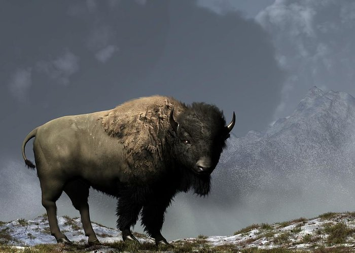 Bison Greeting Card featuring the digital art Lonely Bison by Daniel Eskridge