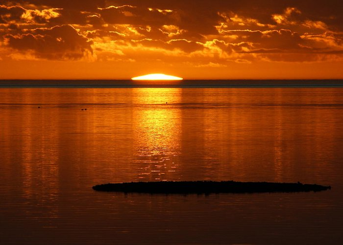 Sunset Greeting Card featuring the photograph Looking For The Green Flash by Debbie May