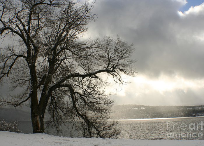 Lake Greeting Card featuring the photograph Luminescence by Idaho Scenic Images Linda Lantzy