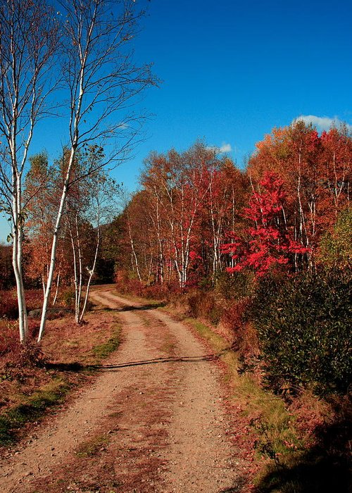 Fall Greeting Card featuring the photograph Maine October by Doug Mills