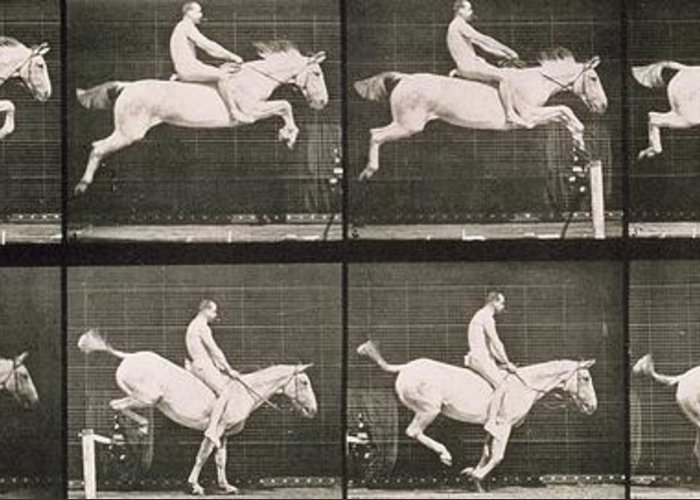 Muybridge Greeting Card featuring the photograph Man And Horse Jumping A Fence by Eadweard Muybridge